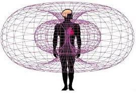 Виды физических полей тела человека. Их источник