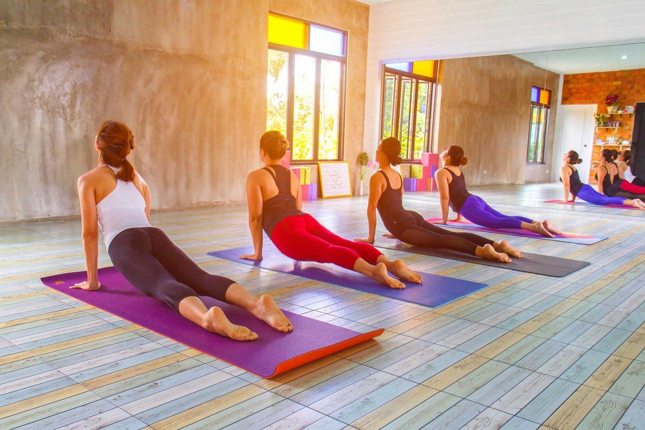 Направления и стили йоги