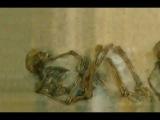 фото эротика! Сексуальная жизнь древних людей. Документальный фильм