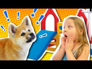 VLOG: Собираем домик и горку для квартиры, щенок Киба первый раз катается с деткой горки