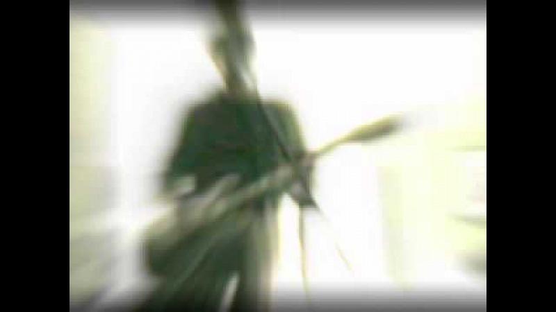 Ceremony - disintegration