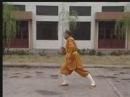 Ши Дэцянь показывает Ицзиньцзин и Ба Дуань Цзин