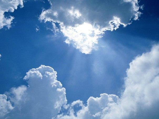 Тянутся к небу золотые кресты,