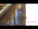 Логопедическое видео - Развивающее видео. Логопедия. Буква Л. Часть 1