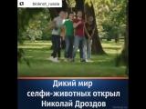 Телеведущий Николай Дроздов рассказал о типах людей, которые любят делать селфи