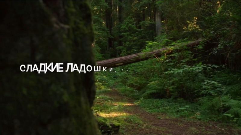 Рождение дочки! Сергей Спартак