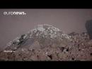 Ученые ЕС ищут часовой механизм вулканов