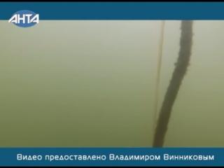 В реке Азовка нашли арматуру. Подводные съемки 14 11 2016