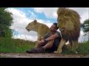 An Unbreakable Bond The Lion Whisperer