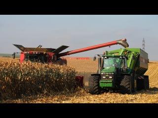 Corn Harvest 2016 - Case IH 9120 Combine and 12 Row Corn Head | John Deere 8530 Bergmann GTW 430
