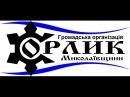 Орлик М Медведчук про необхідність прийняття бюджетного регламенту