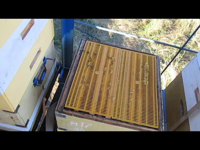 Разделительные решетки для пчел ЗА и ПРОТИВ