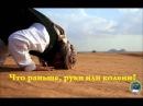 Абу Али аль Аш`ари Что раньше руки или колени