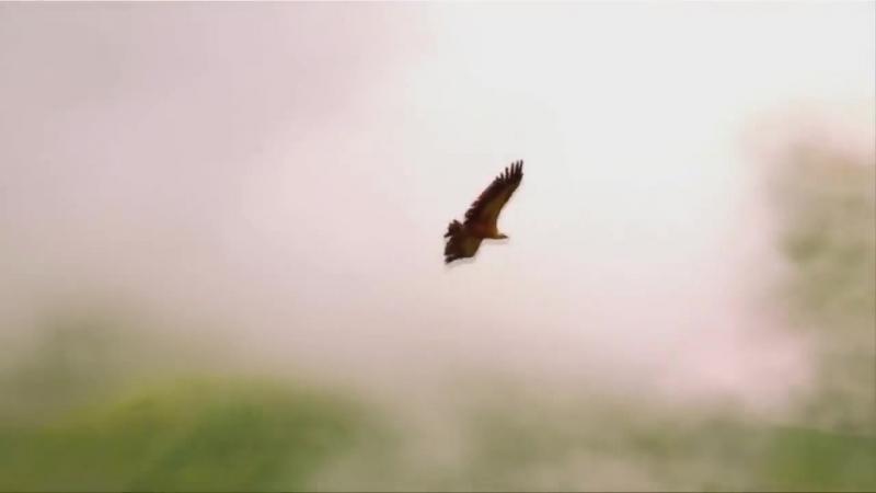 Georgia-Tusheti _ რა ლამაზია თუშეთი - ანრი ჯოხაძე