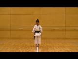 7 Year Old Girl Karate Master - Incredible Kankudai Demo