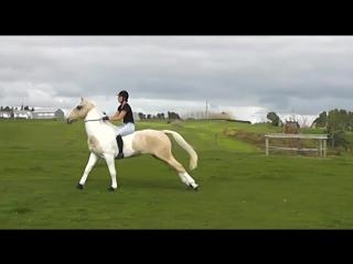 Alycia Burton free riding #EuroHorse