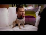 Key  Peele - Puppy Dog Ice-T