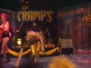 THE CRAMPS Whats Inside A Girl Hot Pearl Snatch Live on The Tube 1986