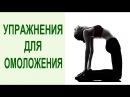 Тибетская гимнастика 5 тибетских упражнений око возрождения для омоложения и долгожительства
