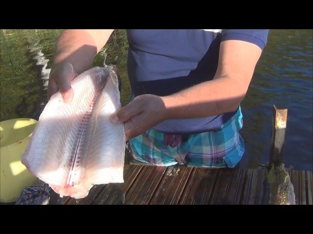 Разделываем и коптим щуку. Как коптить рыбу?