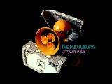 The Boo Radleys - C'mon Kids (Mekon Remix)