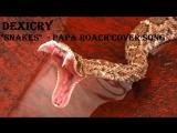 ЗЛОЙ Рэпкор кавер со скримом на PAPA ROACH от DEXICRY