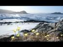Замерзшая планета HD