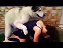 Собака хочет девушку 💕 Dog wants a Woman. Beautiful girls and dogs 💕 Прикольное, сексуальное видео