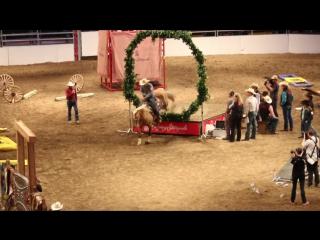 Джим Андерсен и его конь Мерлин Монро   2016 Calgary Stampede's Cowboy Up Challenge.