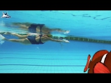 РАЗБОР ТЕХНИКИ №2 Как Быстро научиться плавать кролем