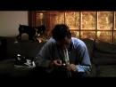 Mickey Avalon - My Dick [HD]