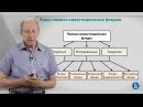 Курс лекций Фондовый рынок Лекция 4 Виды ПИФ