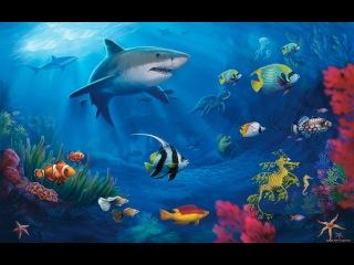 Человек и природа Океаны. Документальный фильм.