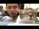Cat and Owner Vibe Out to Music - Hotline Bling