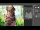 The Power of Curves What you can do in Photoshop by only using curves