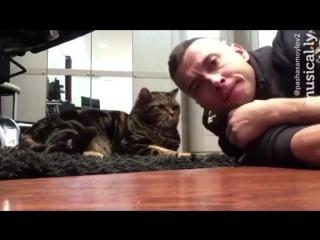Когда есть кот, а девушки нет
