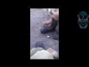 Веселая армия 4! Армейские приколы,сборник 2017 смотреть всем!Армия РФ