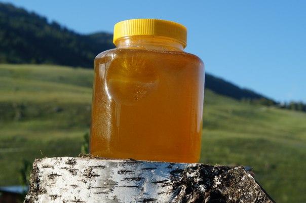 Высокогорный мёд Республики Алтай. 1,5 литра (примерно 2,2кг)
