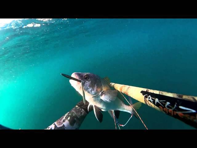 Подводная охота на Чёрном море август 2015