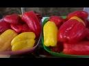 Рецепт заготовки на зиму домашнего маринованного болгарского перца за 10 мин без стерилизации.
