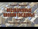 Евгений Федоров Несуверенные кнопки Госдумы часть 1 04 07 2017