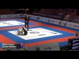 Artem Sydorov vs Zachary Neminsky  #WorldPro17 #bjf_нашилюди