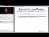 29th Lecture-Kaplan Step 1 CA-Biochemistry Metabolism-Brooks-July 8, 2015