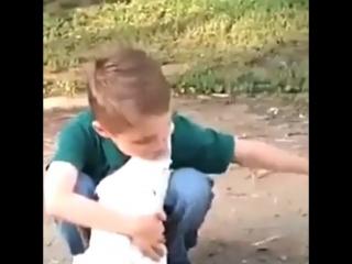 [Kavkaz vine] МА ша Аллах