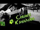 Собаке Качалова - на укулеле (6 Океанов, cover) Есенин