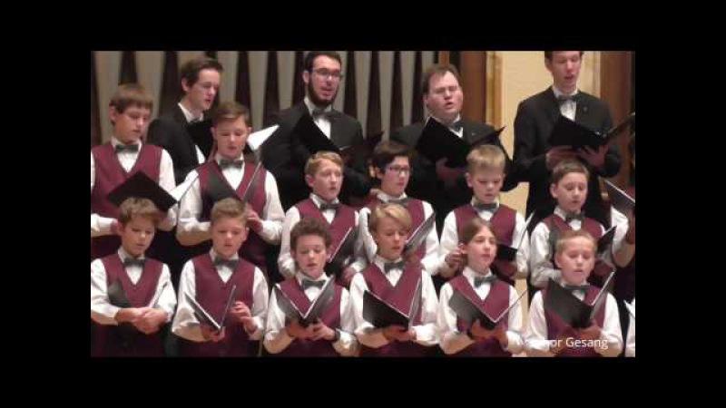 Knabenchor capella vocalis O wie herbe ist das Scheiden Friedrich Silcher (Tübingen 04.02.2017)