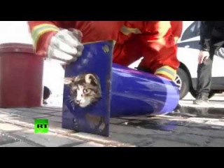 From rescued kids to rescued cats: Chinese firefighters save kitten that was stuck in pipe