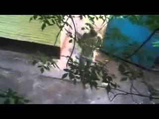 Очевидец ДТП 1166, Сентябрь 2013, НЛО на трассе Самара Оренбург, ПРИКОЛ