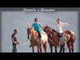 Природа. Шешоры. SalsaAfroCamp. Music Ibeyi - River &amp Calle Vapor - Vente Negra