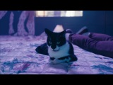 KAYTRANADA - GLOWED UP (feat. Anderson .Paak) · #coub, #коуб